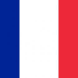 Send pakker til Frankrig pris